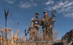 FRANCESES EN MONTERÍA, A RECECHO CONEJOS CON ARCO (30/10/16)