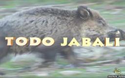 TODO JABALÍ (parte 1)