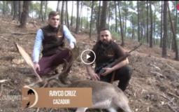 RECECHO DE GAMO ENTRE LOS PINOS - EL PRIMER OJEO DE PERDIZ (02/12/18)